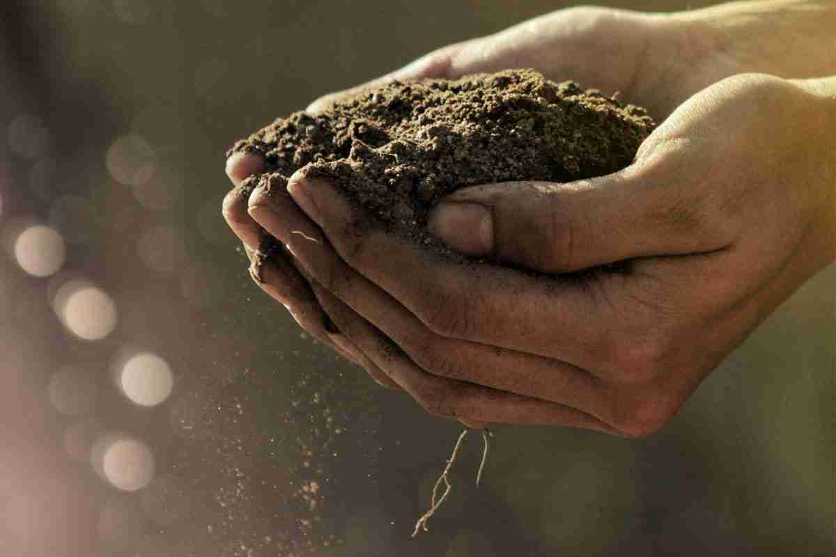 elements of simple life person holding dirt